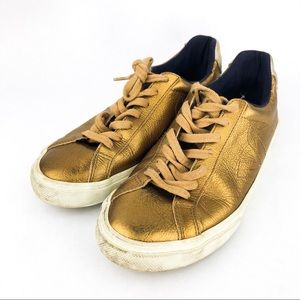 My well used bronze Veja sneakers